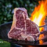 Feuerplatte Pyron Plate T-Bone feuerplatte_T Bone Steak Feuerplatte 5 von 18 150x150