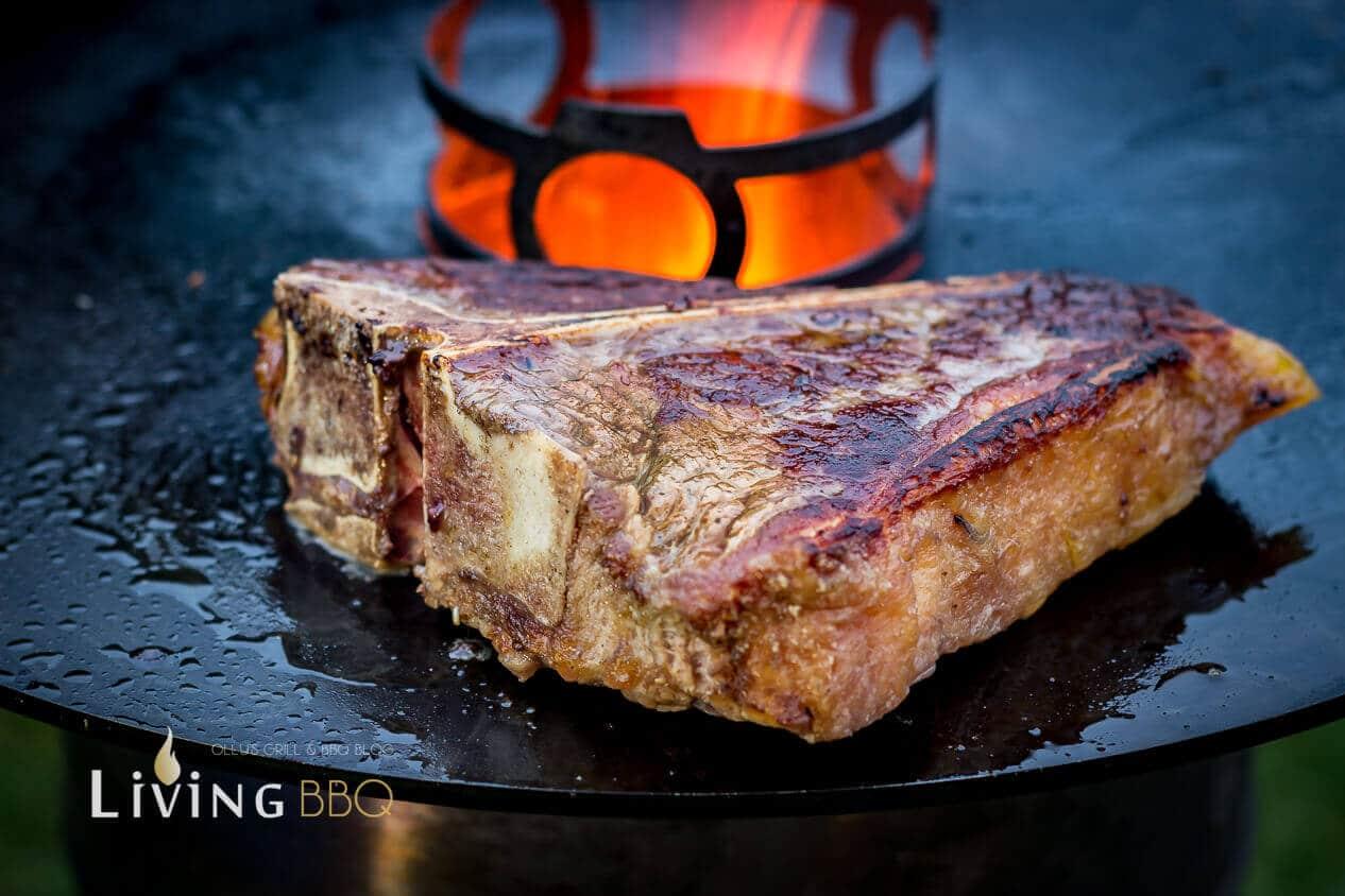 feuerplatte_T Bone Steak Feuerplatte 7 von 18