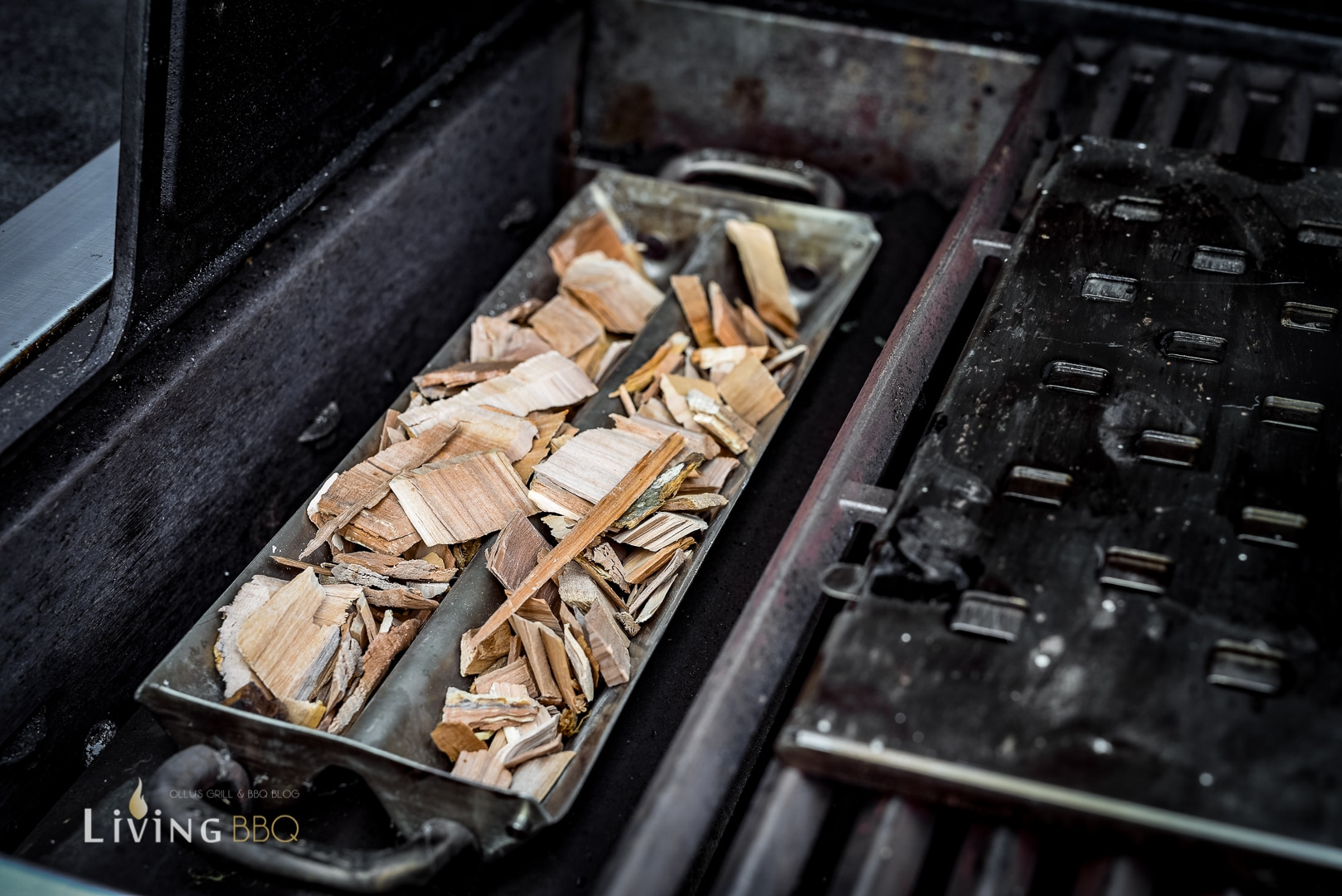 Broilking Räucherbox mit Holzchips _Kalbsru  cken mit Pesto und Lardo 2 von 24 1