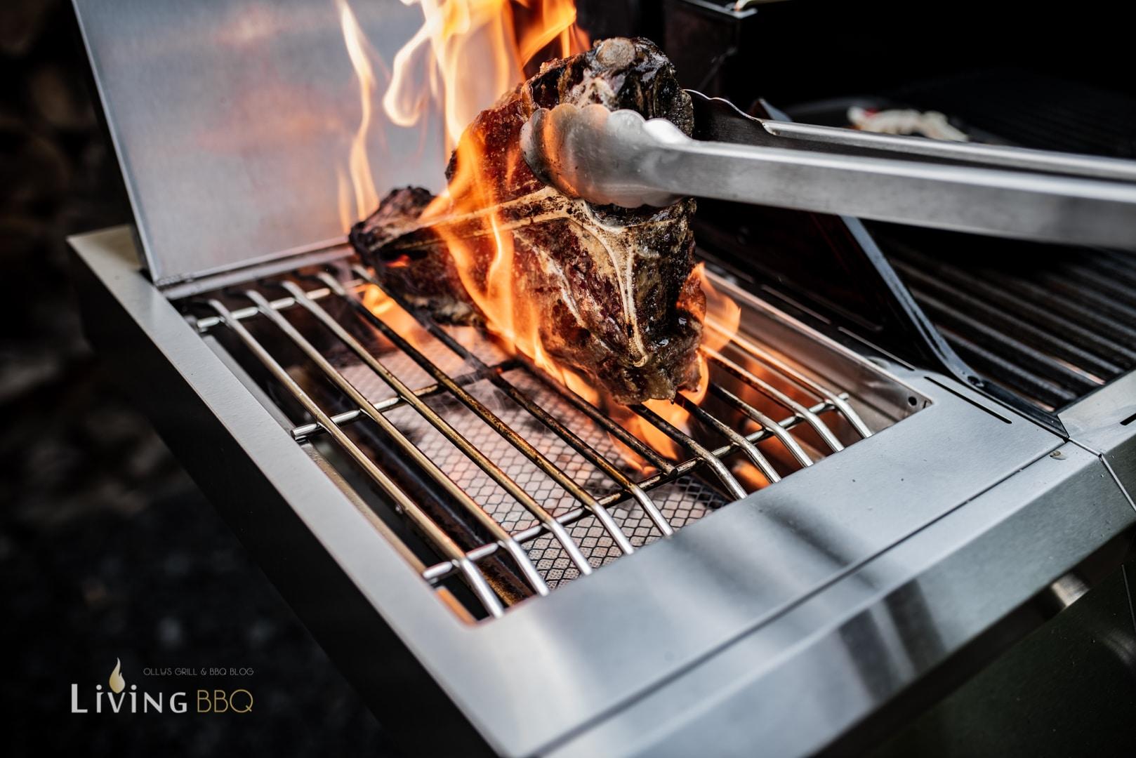 Steakbrenner des G310