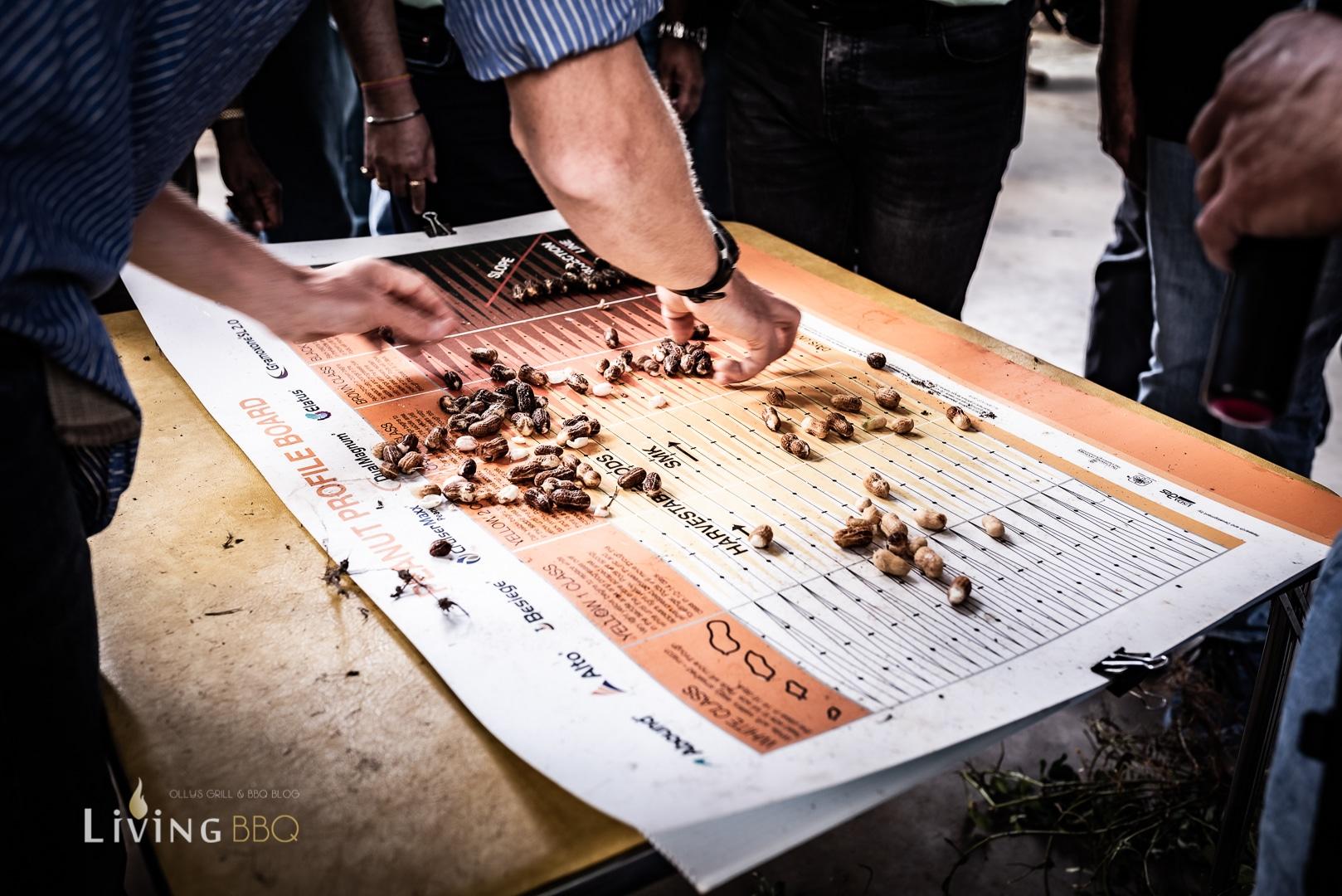 Quatliätsbestimmung der Erdnüsse